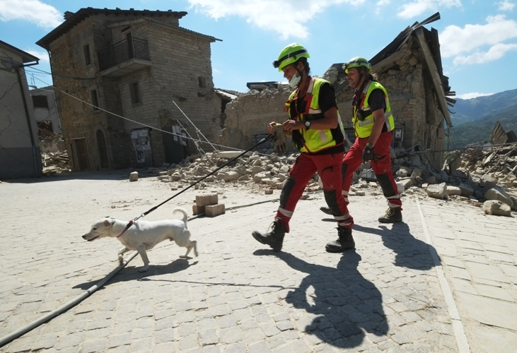 Rescuers walk with a dog past damaged buildings in a street in the central Italian village of Illica, near Accumoli, on August 24, 2016 after a powerful earthquake rocked central Italy. A powerful pre-dawn earthquake devastated mountain villages in central Italy on August 24, 2016, leaving at least 73 people dead, dozens more injured or trapped under the rubble and thousands temporarily homeless. Scores of buildings were reduced to dusty piles of masonry in communities close to the epicentre of the pre-dawn quake, which had a magnitude of between 6.0 and 6.2, according to monitors. / AFP PHOTO / MARIO LAPORTA
